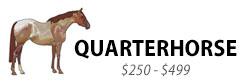 Quarterhorse, $250-$499
