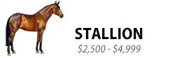 Stallion, $2,500-$4,999 and up